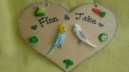 3d Pet Budgie Budgerigar Bird Heart shape wooden Personalised sign Up to 2 characters cage aviary